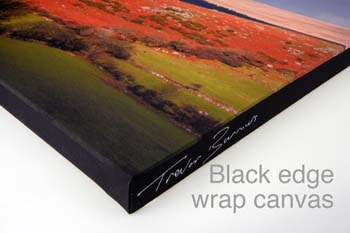 black edge wrap canvas